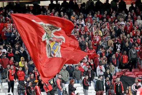 Benfica-szurkolo-002