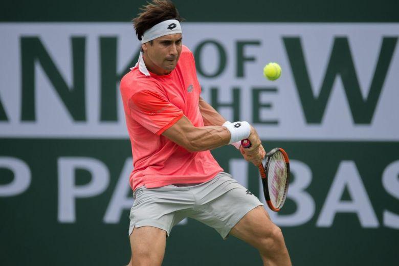 David Ferrer (Fotó: action sports / Shutterstock.com)