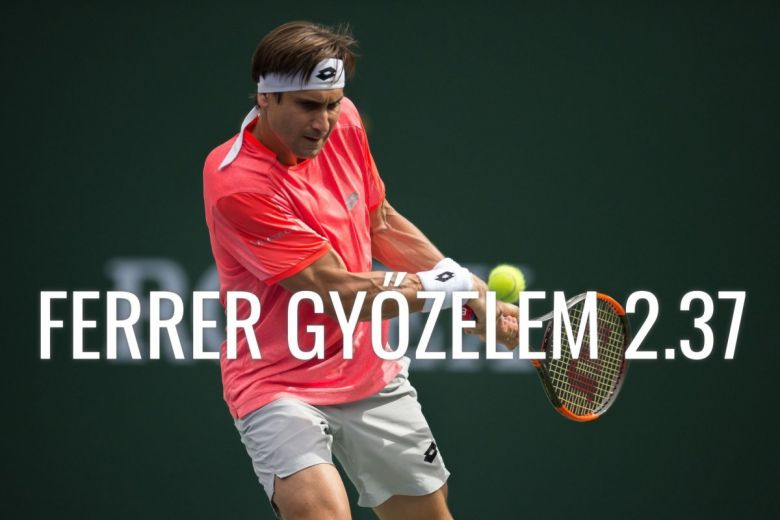 David Ferrer (Fotó: action sports / Shutterstock.com)