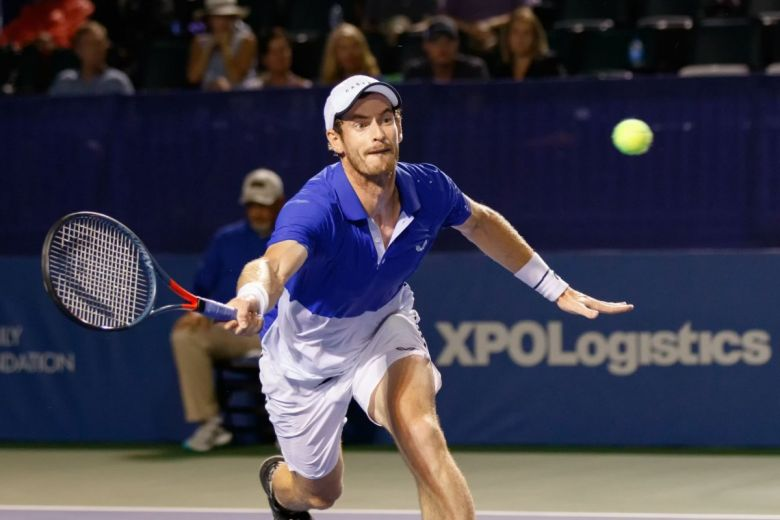 Andy Murray (Fotó: Bryan Pollard / Shutterstock.com)