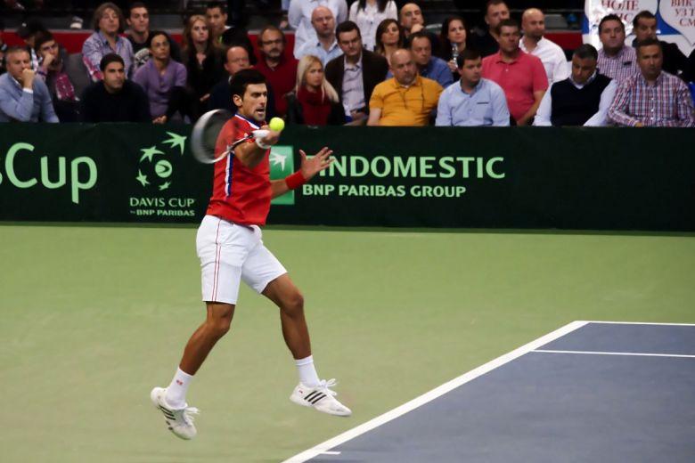 Novak Djokovic (Fotó: Foto011 / Shutterstock.com)