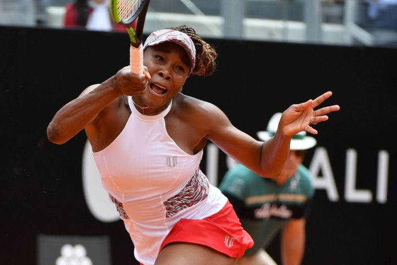 Venus Williams (Fotó: FRANCESCO PANUNZIO / Shutterstock.com)