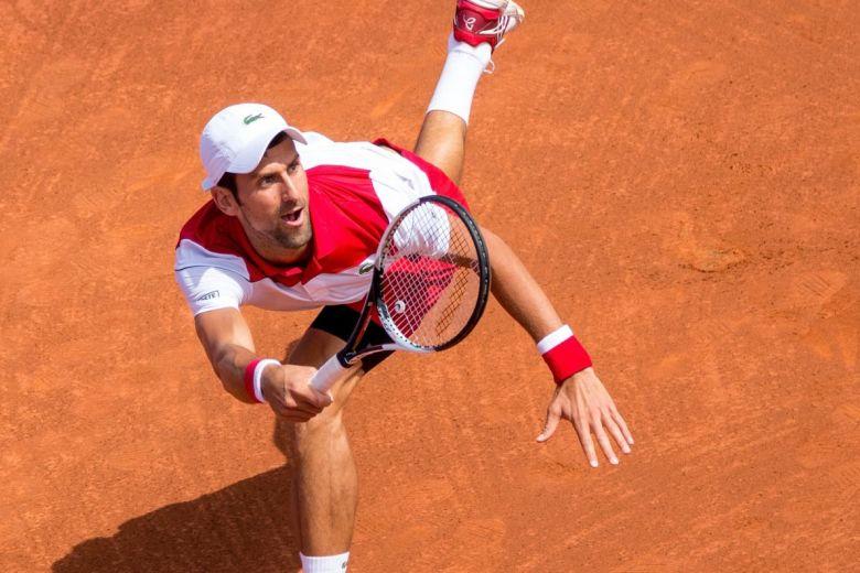 Novak Djokovic (Fotó: Christian Bertrand / Shutterstock.com)